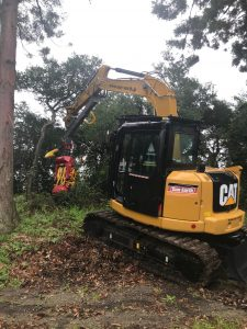 台風による倒木を伐採するハーベスタヘッド ウッディ40