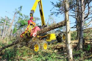 林業機械 高性能ハーベスタ ハイランダー